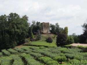 castelo Cira.jpg