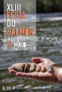 Cartel festa do salmon
