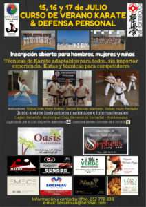 Cartel curso karate